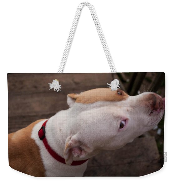 Red Pit 3 Weekender Tote Bag