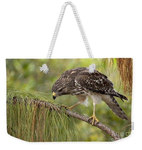 Red Shouldered Hawk Photo Weekender Tote Bag