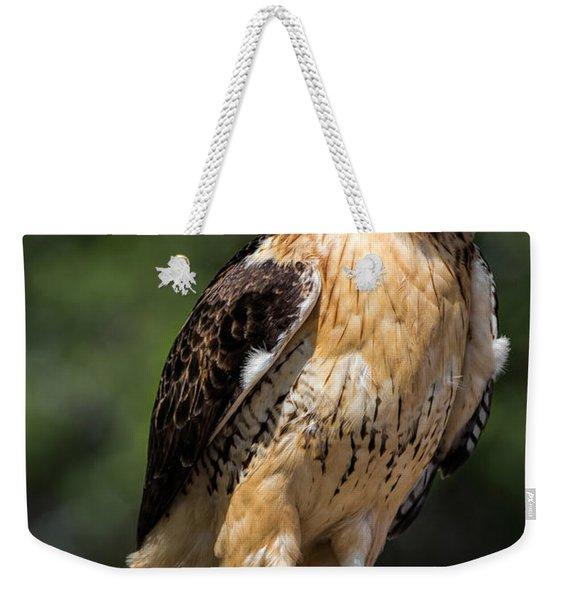 Red Tail Hawk Portrait Weekender Tote Bag