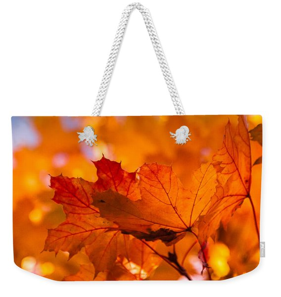 Weekender Tote Bag featuring the photograph Red Tipped Gold by Jeff Folger