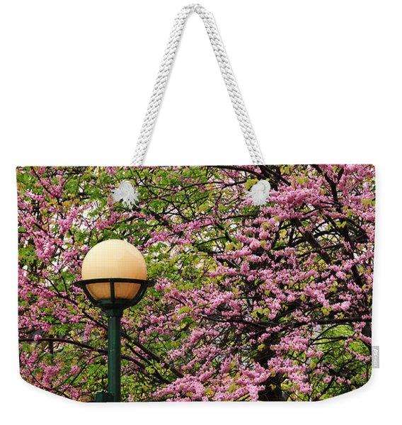 Redbud And Lamp Weekender Tote Bag