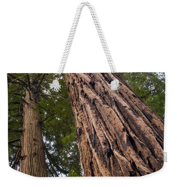 Muir Woods Canopy  Weekender Tote Bag