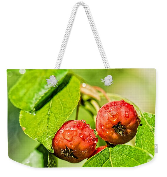 Related With One Drop Weekender Tote Bag