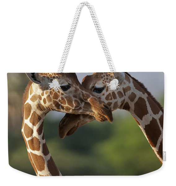 Reticulated Giraffe Weekender Tote Bag