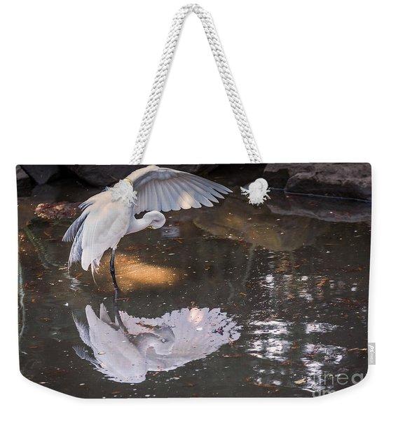 Revealed Landscape Weekender Tote Bag