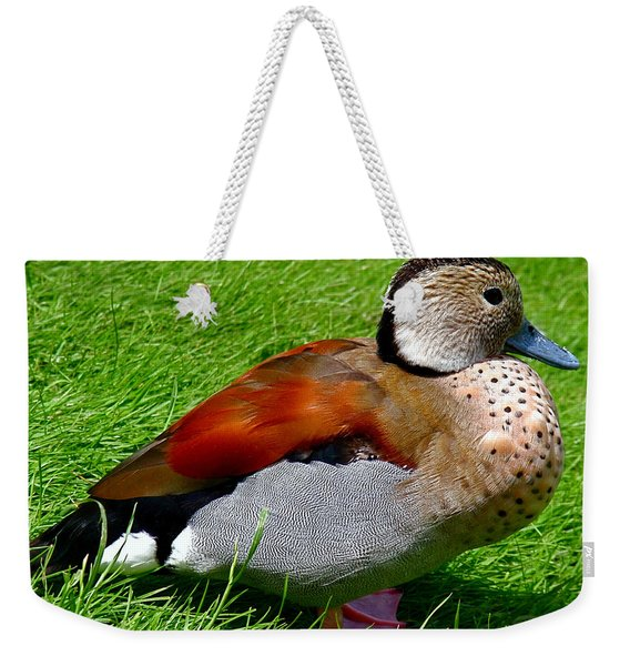 Ringed Teal Drake Weekender Tote Bag