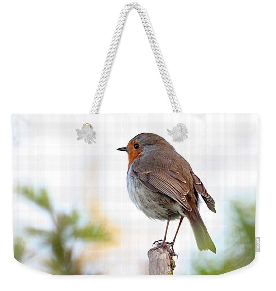 Weekender Tote Bag featuring the photograph Robin On A Pole by Jeremy Hayden