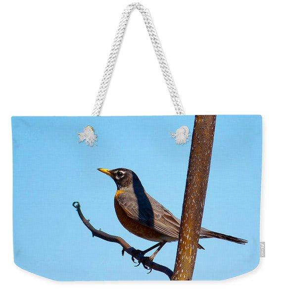 Robin Taking A Break Weekender Tote Bag
