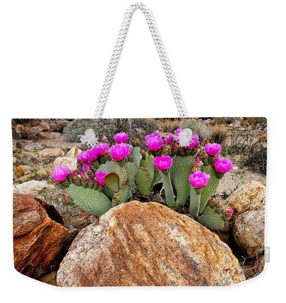 Rock And Beavertail Weekender Tote Bag