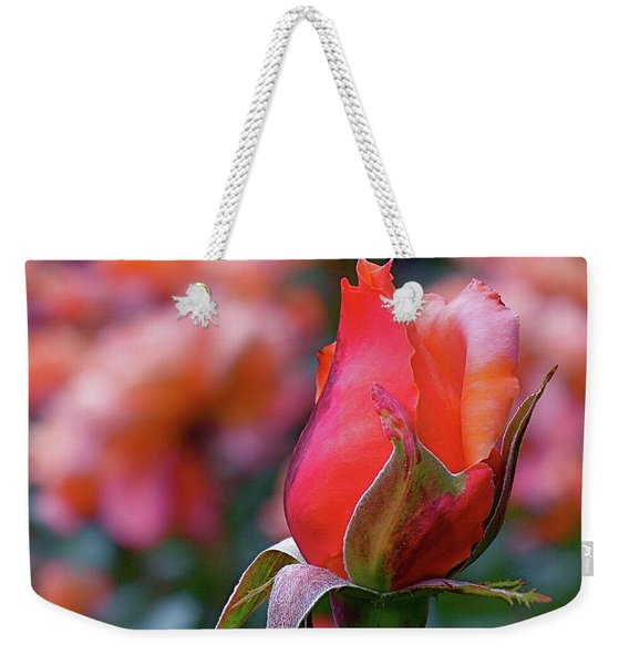 Rose On Rose Weekender Tote Bag