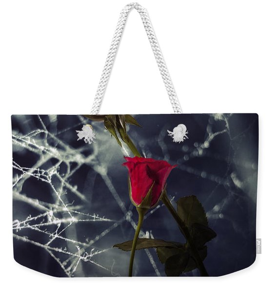 Roses With Coweb Weekender Tote Bag