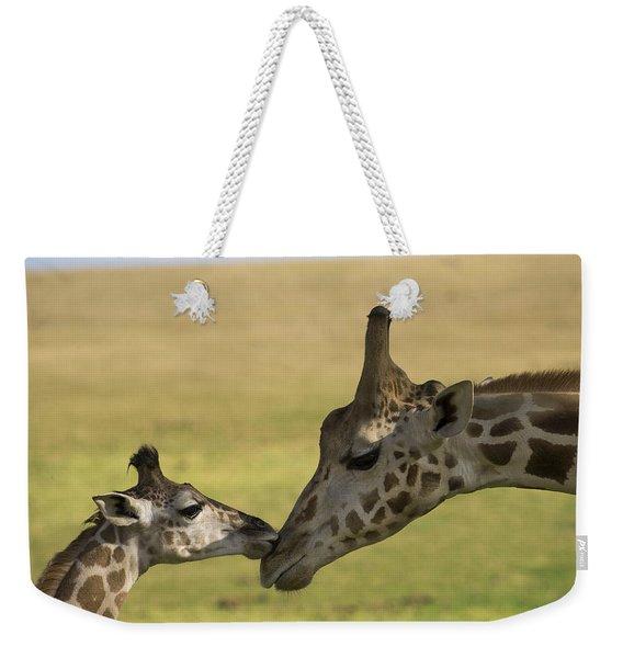 Rothschild Giraffe Male Calf Nuzzling Weekender Tote Bag