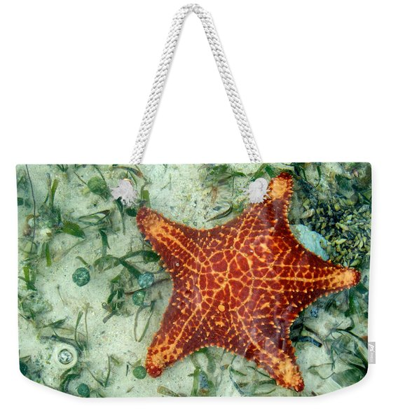 Weekender Tote Bag featuring the photograph Running Starfish by Mary Lee Dereske