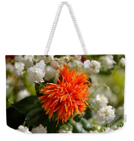 Weekender Tote Bag featuring the photograph Safflower Amongst The Gypsophilia by Scott Lyons