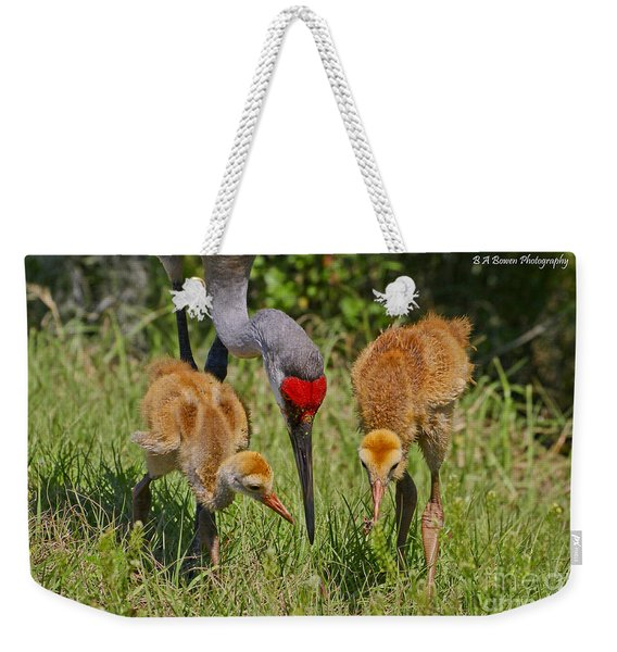 Sandhill Crane Family Feeding Weekender Tote Bag
