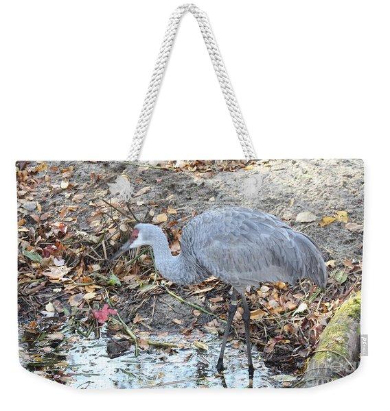 Sandhill Crane Feeding Weekender Tote Bag