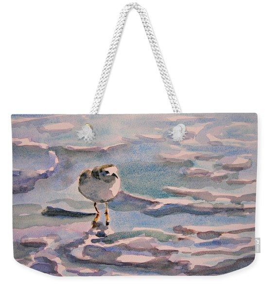 Sandpiper And Seafoam 3-8-15 Weekender Tote Bag