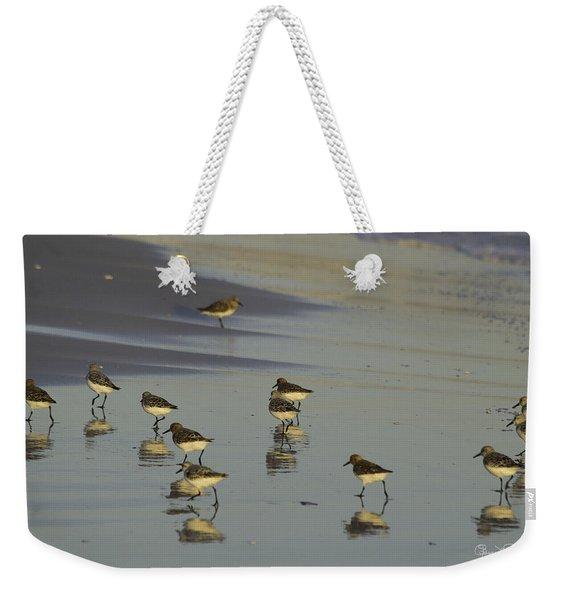 Sandpiper Sunset Reflection Weekender Tote Bag