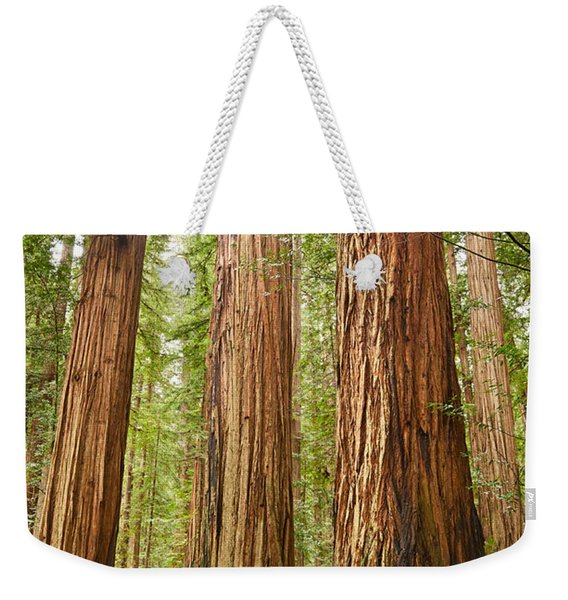 Scale - The Beautiful And Massive Giant Redwoods Sequoia Sempervirens In Redwood National Park. Weekender Tote Bag