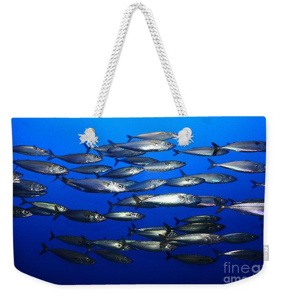 School Of Pacific Sardines 5d24927 Weekender Tote Bag