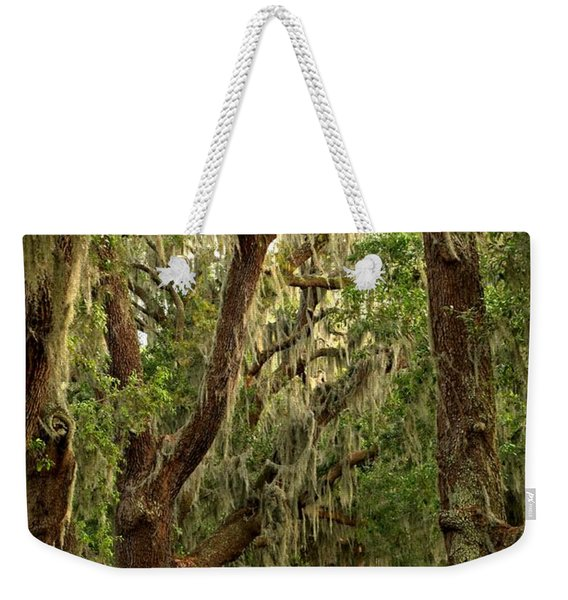 Sea Island Oaks Portrait Weekender Tote Bag