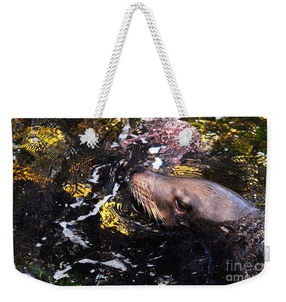 Sea Lion Posing For A Headshot Weekender Tote Bag