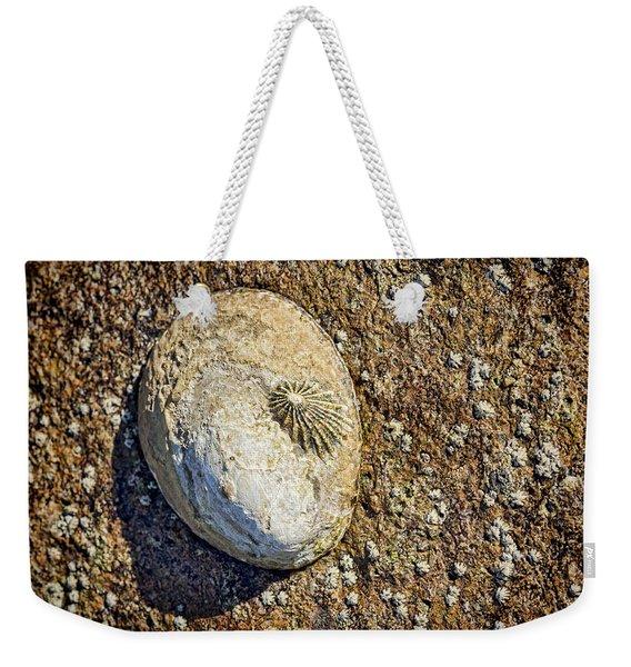 Sea Shell By The Seashore Weekender Tote Bag