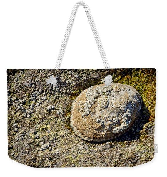 Sea Shell Rock Weekender Tote Bag
