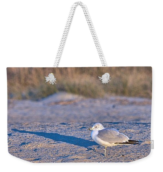 Seagull At Sunrise Weekender Tote Bag