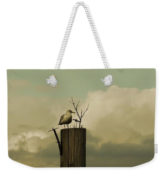 Weekender Tote Bag featuring the photograph Seagull Lookout by Patricia Strand