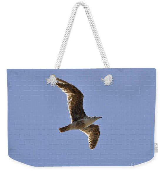 Seagull N Light  Weekender Tote Bag