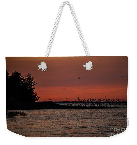 Seagulls At Sunset Weekender Tote Bag