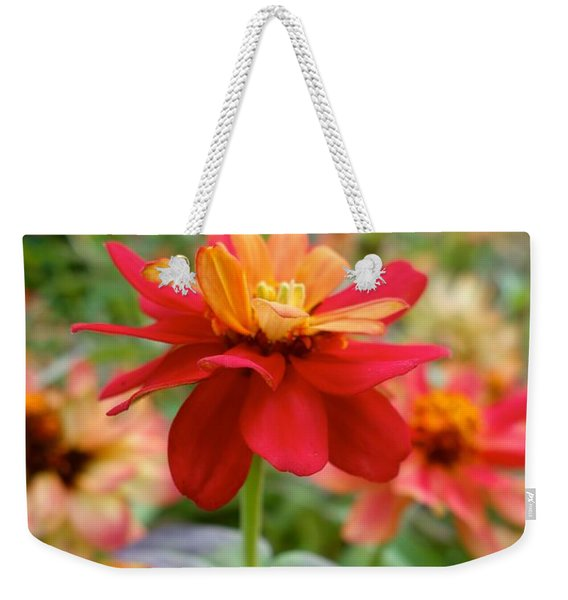 Weekender Tote Bag featuring the photograph Serenity In Red by Jacqueline Athmann