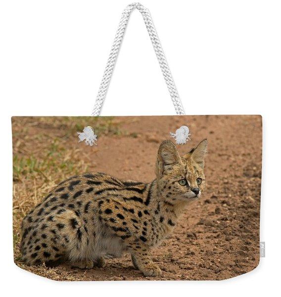 Serval Wild Cat Weekender Tote Bag