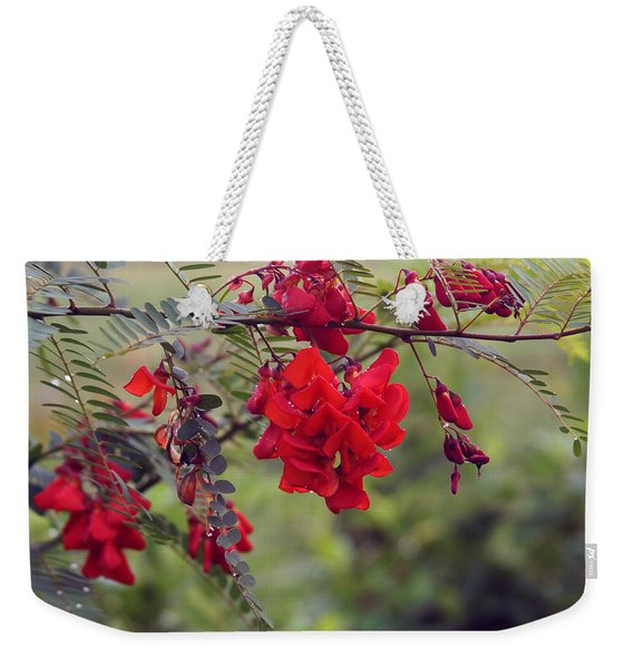 Sesbania Punicea Weekender Tote Bag