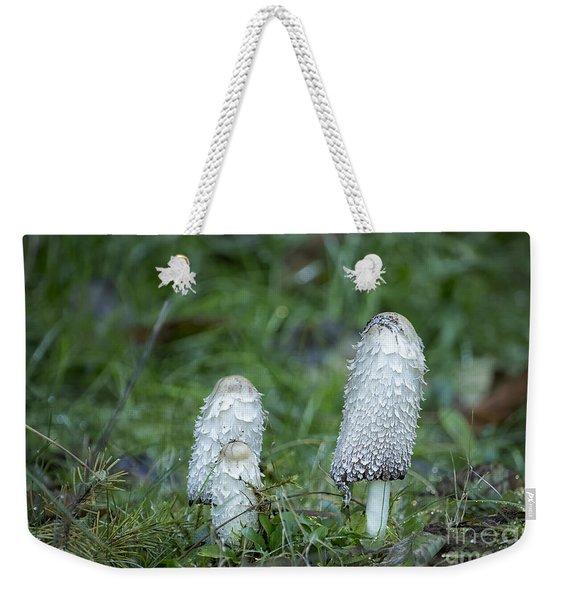 Shaggy Cap Mushroom No. 3 Weekender Tote Bag
