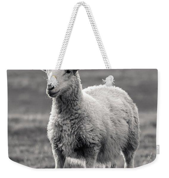 Sheep Art  Weekender Tote Bag