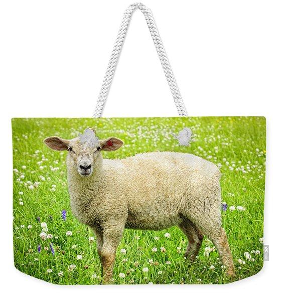 Sheep In Summer Meadow Weekender Tote Bag