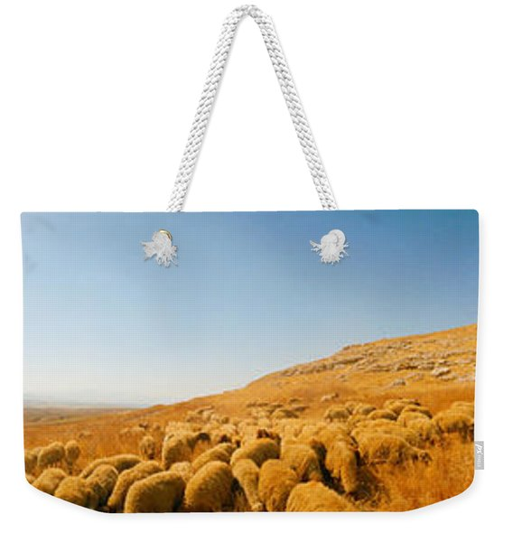 Shepherd Standing With Flock Of Sheep Weekender Tote Bag