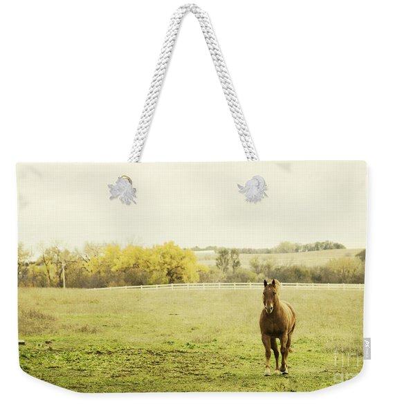 Shiloah On The Run Weekender Tote Bag