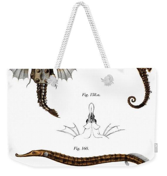 Short Dragonfish Weekender Tote Bag
