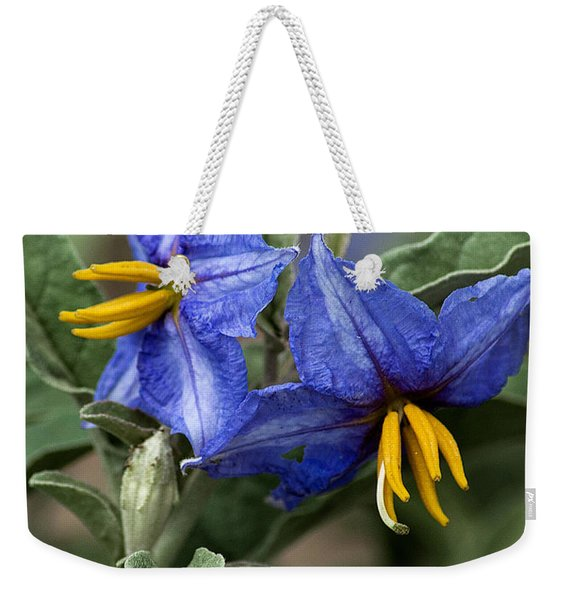 Weekender Tote Bag featuring the photograph Silver Leaf Blooms by Mae Wertz