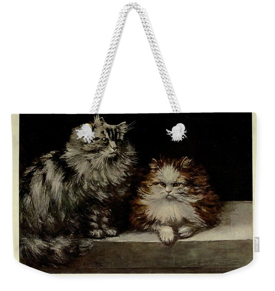Silver Tabby And Orange And White Persians Weekender Tote Bag