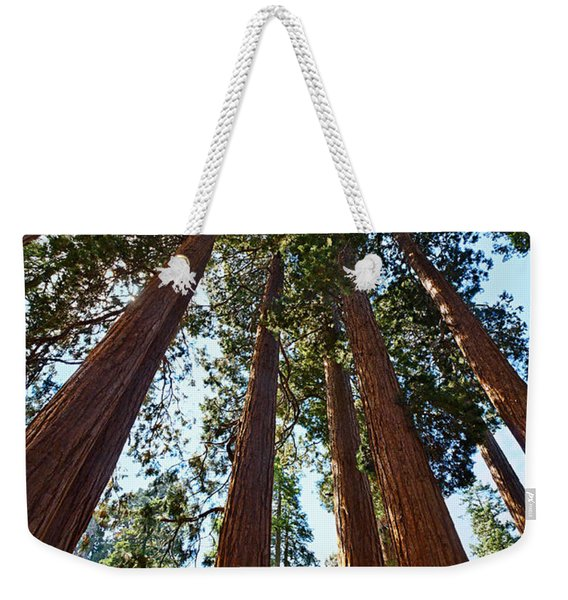 Skyscrapers - A Grove Of Giant Sequoia Trees In Sequoia National Park In California Weekender Tote Bag