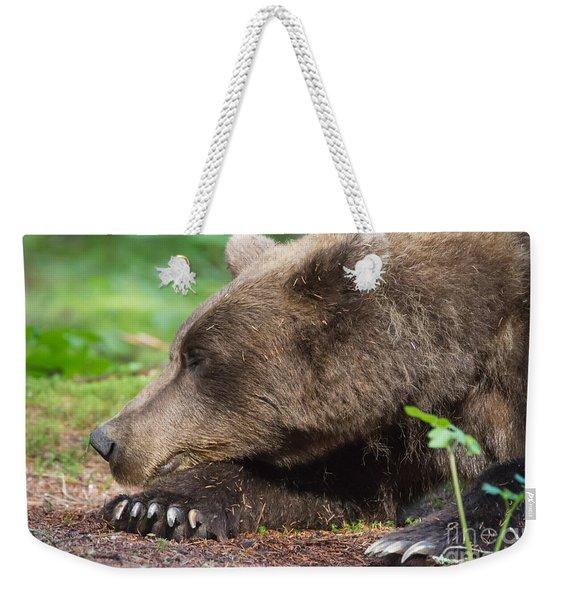 Sleeping Bear Weekender Tote Bag
