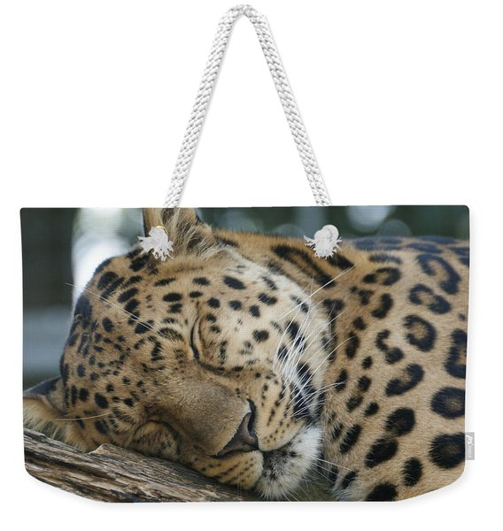 Sleeping Leopard Weekender Tote Bag