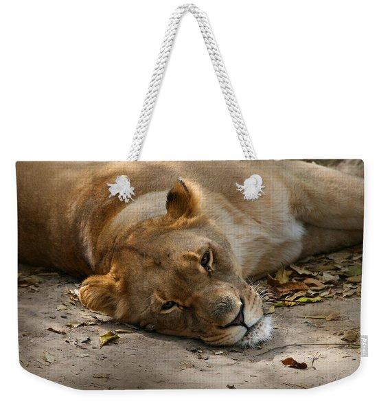 Sleepy Lioness Weekender Tote Bag