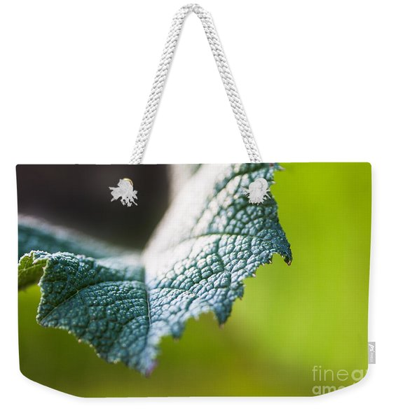 Weekender Tote Bag featuring the photograph Slice Of Leaf by John Wadleigh