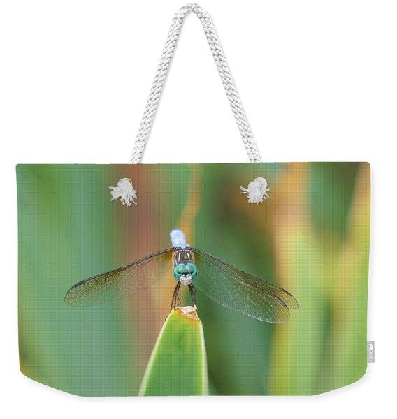 Smiling Dragonfly Weekender Tote Bag