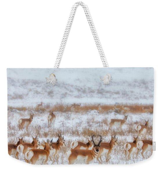 Snow Grazers Weekender Tote Bag